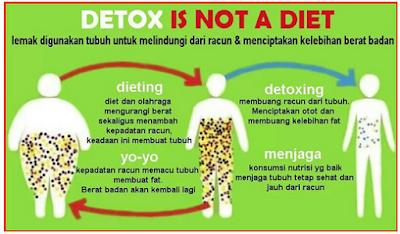Cara Melangsingkan Tubuh Dengan Diet DETOX