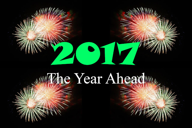 2017 The Year Ahead