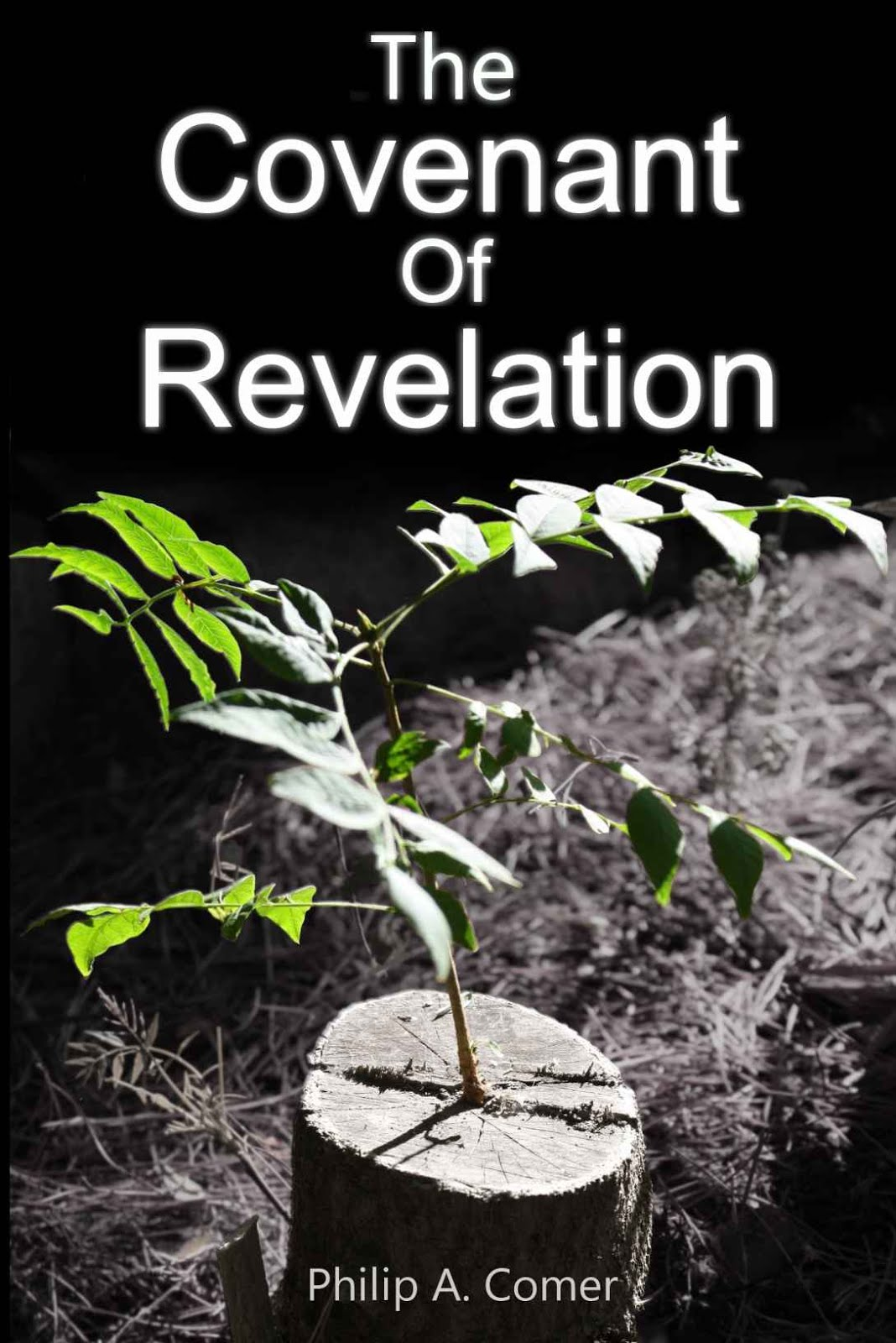 the Covenant of Revelation