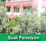 http://www.fistiklipansiyonlari.com/2015/07/fstkl-koyu-suat-pansiyon.html
