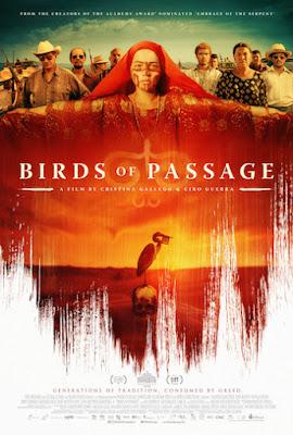 Birds of Passage 2018 English 480p BRRip 350MB