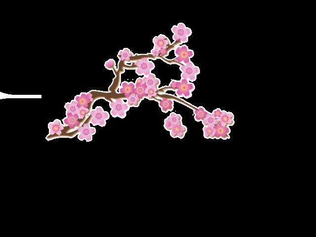 Guias De Flores Para Tarjetas