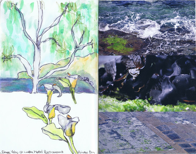 Sketchbook pages from a trip to Tasmania