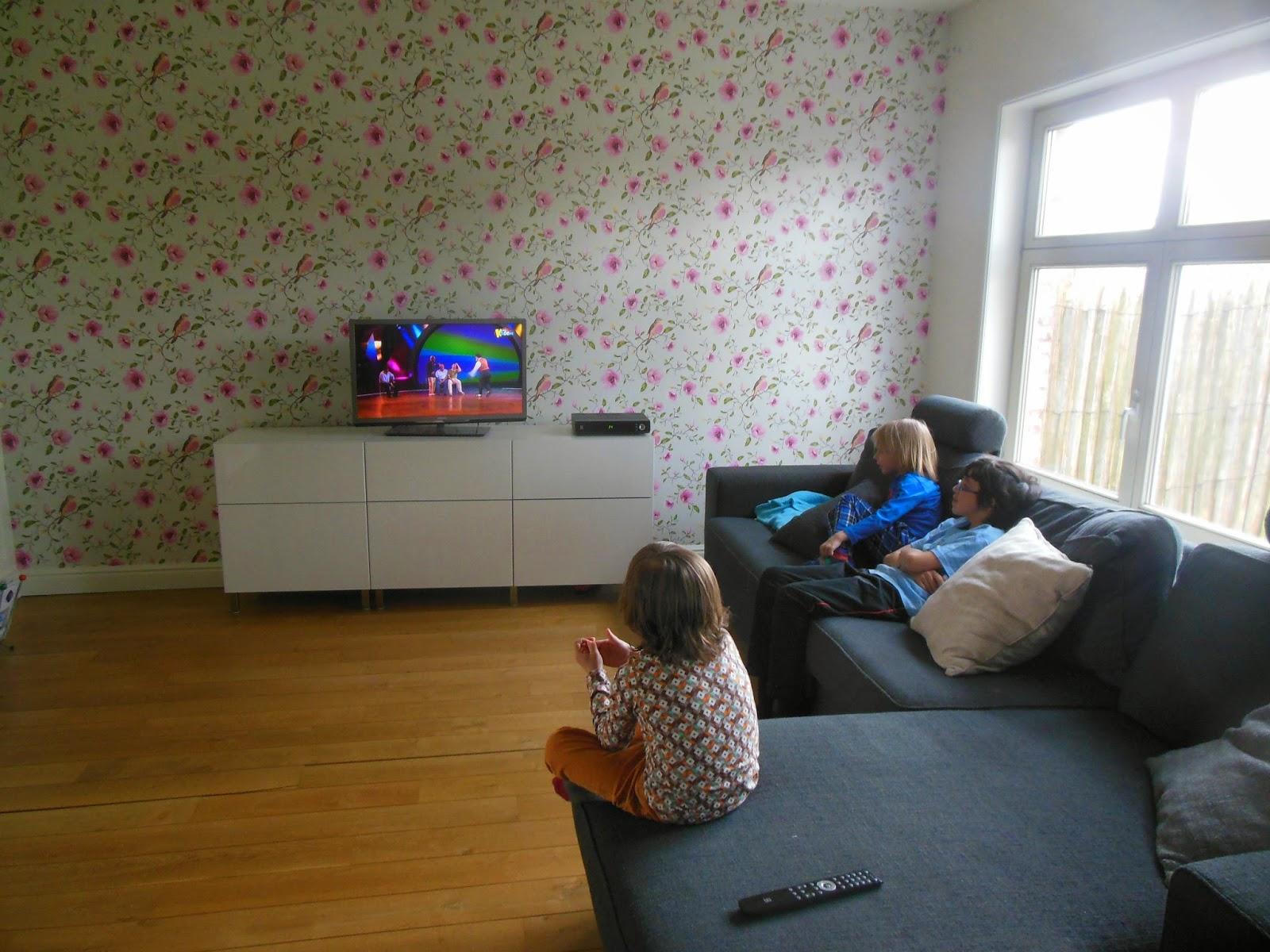 Prachtige Tv Kast.De Tv Kast Kleur En Tandenwisselaar