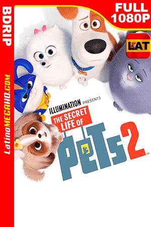 La Vida secreta de tus Mascotas 2 (2019) Latino FULL HD DBRIP 1080P - 2019
