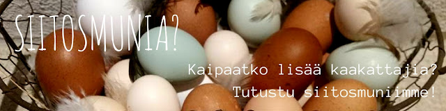 http://siltajoensirkus.blogspot.fi/p/siitosmunat.html