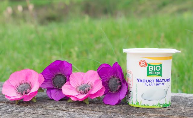 yaourt soin maison shampoing