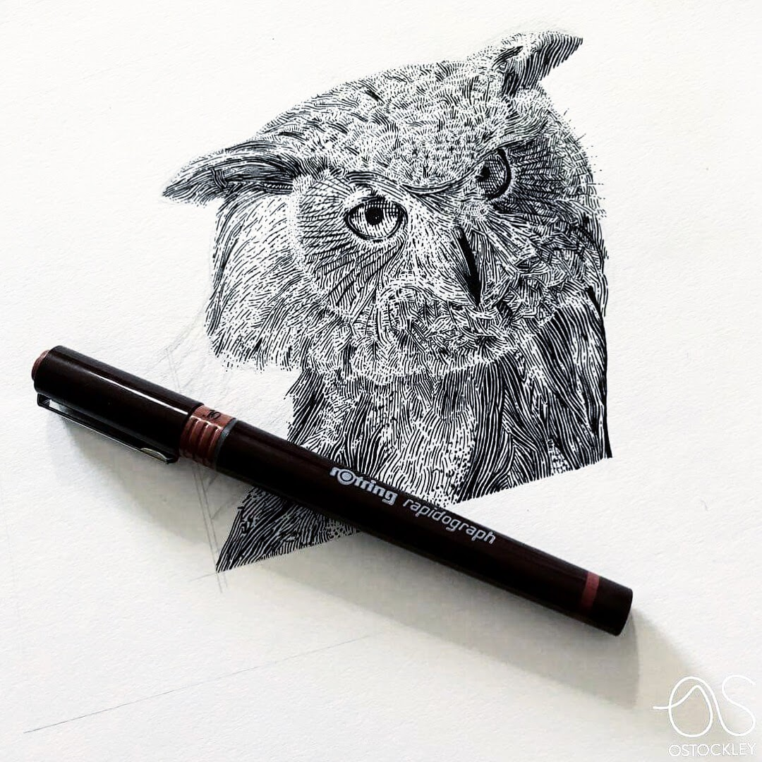 05-Beautiful-Owl-Eyes-Bryan-Schiavone-Tiny-Animals-in-Pen-and-Ink-Drawings-www-designstack-co