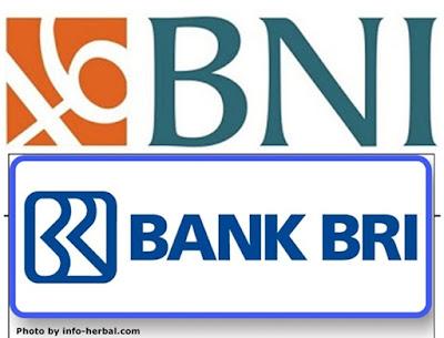 Kelebihan dan Kekurangan Bank BRI dan BNI