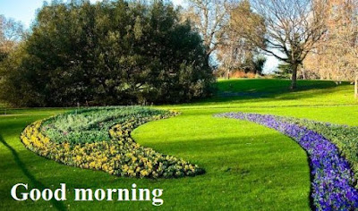 Good morning nature images free download - beautiful scenery
