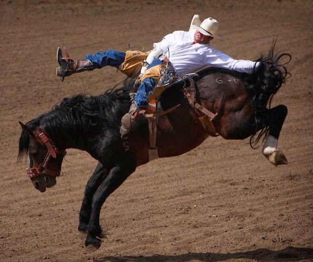 Lexicolatry Bronco Bucking Cowboys Since 1872