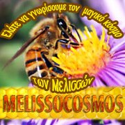Melissocosmos: Ανακοίνωση