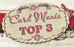Top 3 at Card Mania !