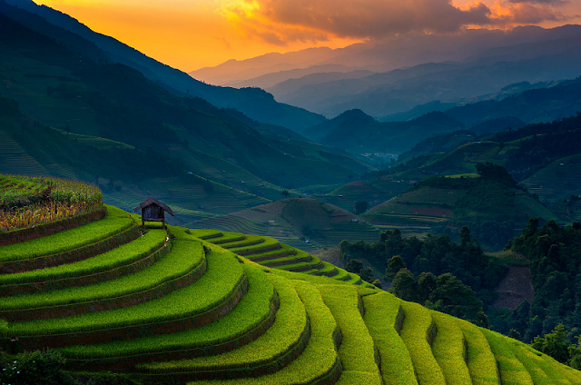 Travel Guide For A Perfect Trip To Mu Cang Chai, Vietnam 2