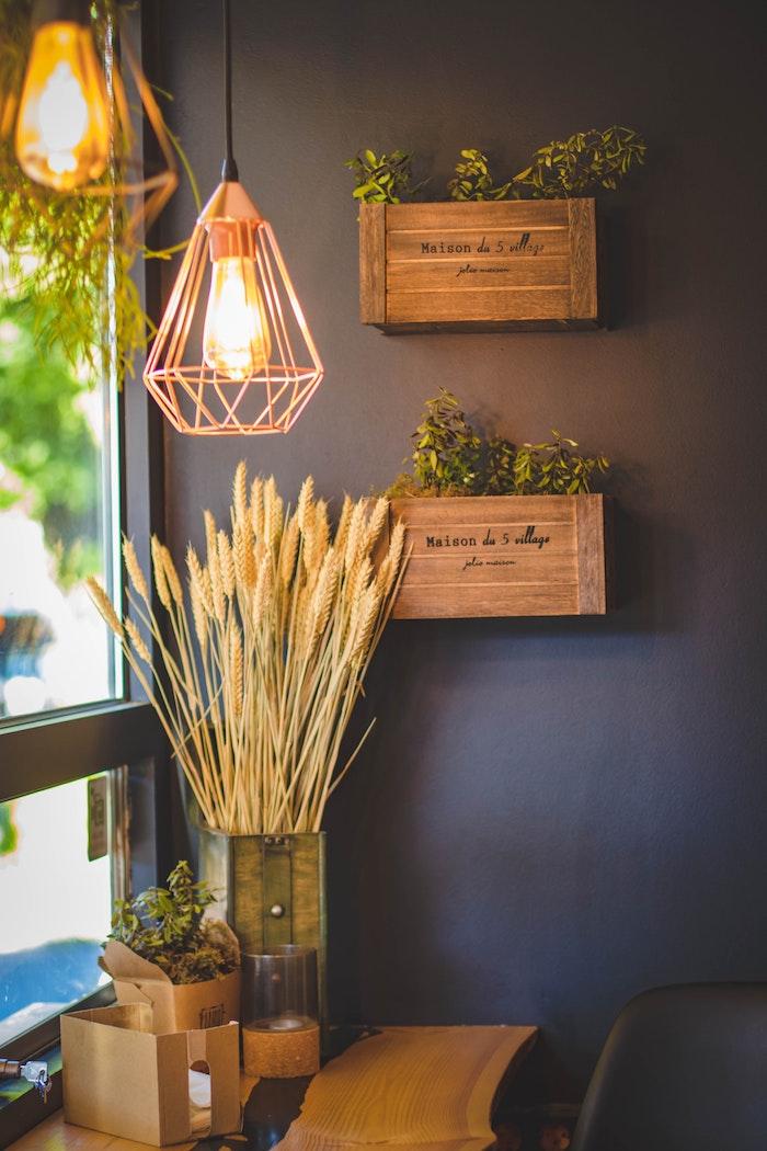 Cajas de madera con plantas