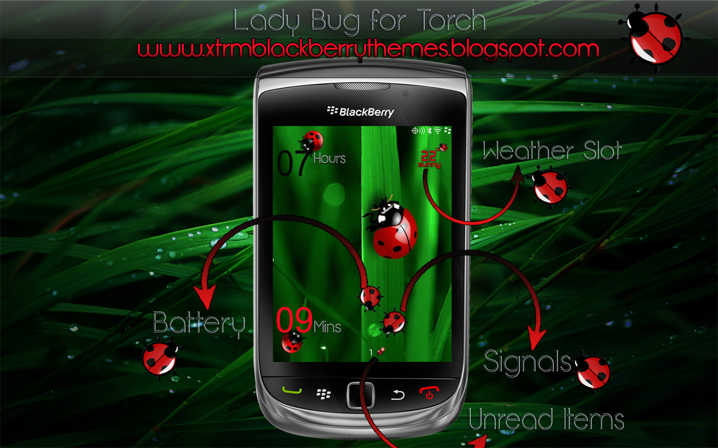 Lady Bug Premium for Torch 9800
