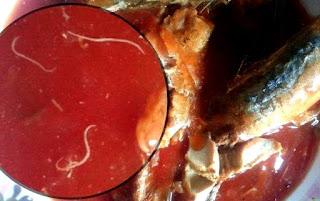 Sarden Mengandung Cacing, Bagaimana Penjelasan Ilmiahnya?