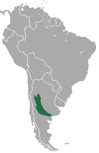 Map showing the range of the Pink fairy armadillo in Argentina