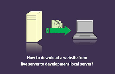 download-move-website-from-live-server-to-local-development-server