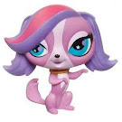 Littlest Pet Shop Small Playset Zoe Trent (#2701) Pet