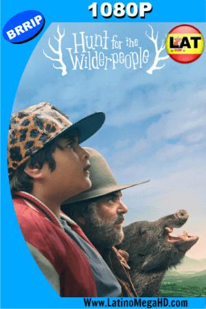 Hunt for the Wilderpeople, Cazando Salvajes (2016) Latino HD 1080P ()