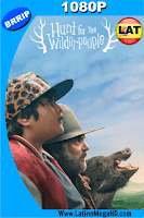 Hunt for the Wilderpeople, Cazando Salvajes (2016) Latino HD 1080P - 2016