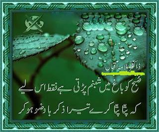 Subah ko Baagh main Shabnam Parhti hai Faqat isliye | Allama Iqbal Poetry - Urdu Poetry Lovers