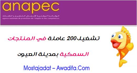 الوكالة الوطنية لإنعاش التشغيل والكفاءات: تشغيل 200 عاملة في المنتجات السمكية بمدينة العيون