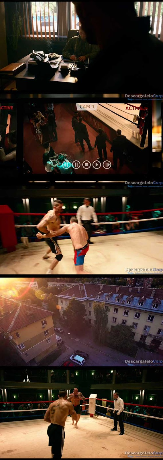 Invicto Boyka Undisputed IV (2016) HD 720p Latino