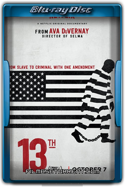 A 13ª Emenda Torrent