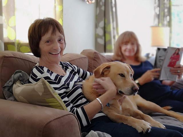 lady cuddling her labrador dog