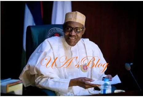 2019 presidency: I'm yet to see anyone who can defeat 'old man' Buhari – Rep Kazaure
