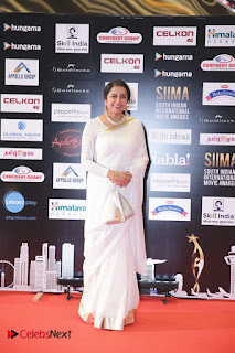South Indian Celebrities Pictures at SIIMA 2016 DAY 1  0042