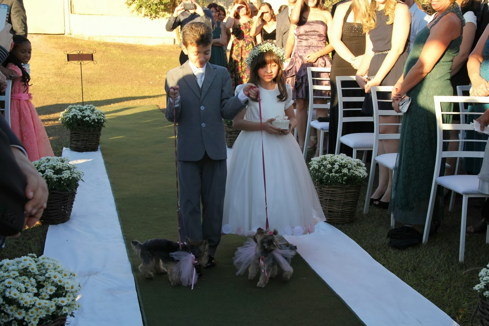 casamento-geek-entrada-aliancas