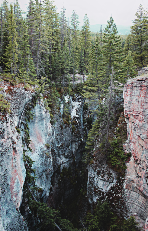 Maligne Canyon Jasper National Park Alberta