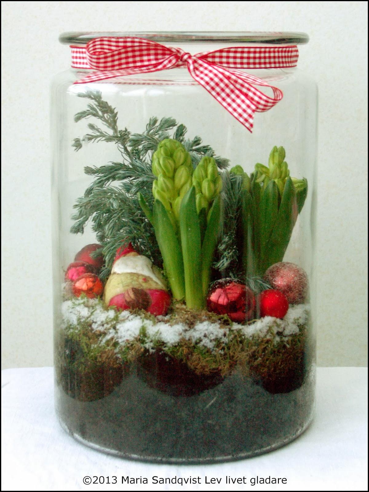 lev livet gladare hyacinter i glasburk. Black Bedroom Furniture Sets. Home Design Ideas