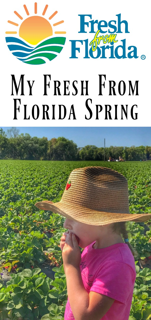 My #FreshFromFlorida Spring from LoveandConfections.com #ad #IC #FollowTheFresh