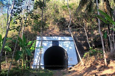 Terowongan Wilhemina, terpanjang kereta api di Indonesia