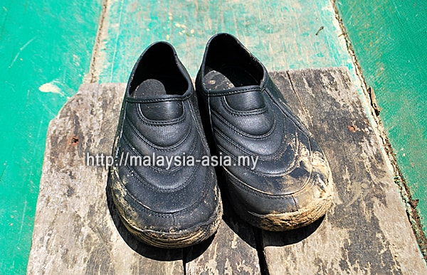 Kampung Adidas Shoes