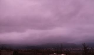 A purple haze