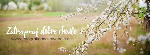 http://www.fotografia.makowepole.eu/