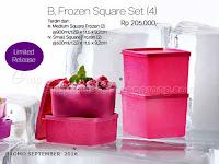 Frozen Square Set Promo Tupperware September 2016