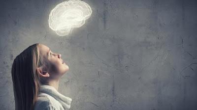 imagen ilustrativa de nuestro cerebro