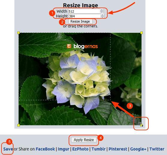 Cara Edit Ukuran Gambar di Situs LunaPic
