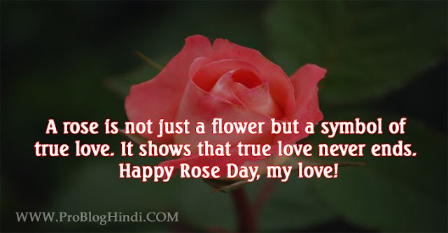 happy rose day, rose day images, rose day quotes, rose day messages, rose day text sms, rose day shayari, rose day status, rose day wallpaper, rose day photos, rose day wishes