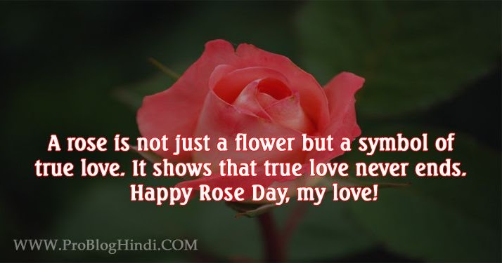 Happy Rose Day 2020 Images Wishes Messages Quotes Shayari Status