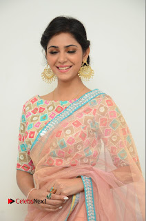 Actress Priyanka Bharadwaj Pictures in Saree at Mister 420 Press Meet  0009.JPG