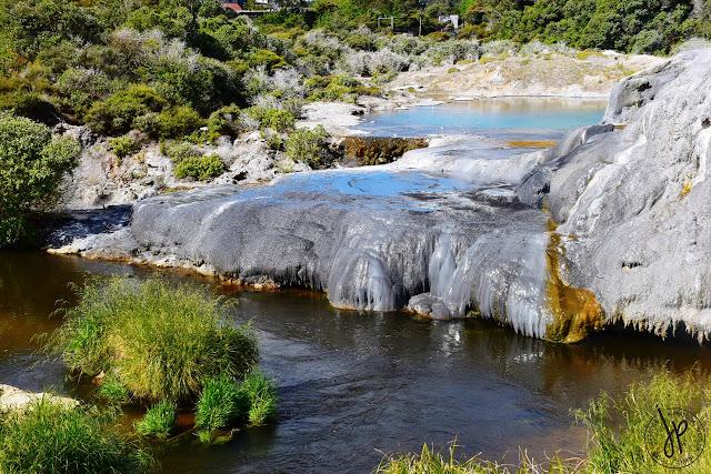 water, grass, geyser, thermal valley