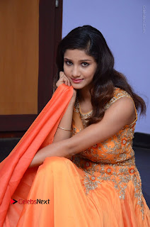 Telugu Actress Aarti Stills in Long Dress at Plus One ( 1) Audio Launch  0082.jpg