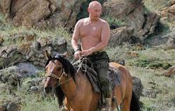 Putin Auf Pferd